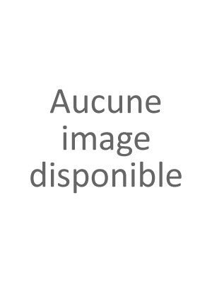 CANNELLE EN POUDRE BIO (ÉCORCE) DE MADAGASCAR 50 G